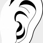 耳管狭窄症になった!耳の奥で音がする症状や耳のつまり感に注意!治療の記録