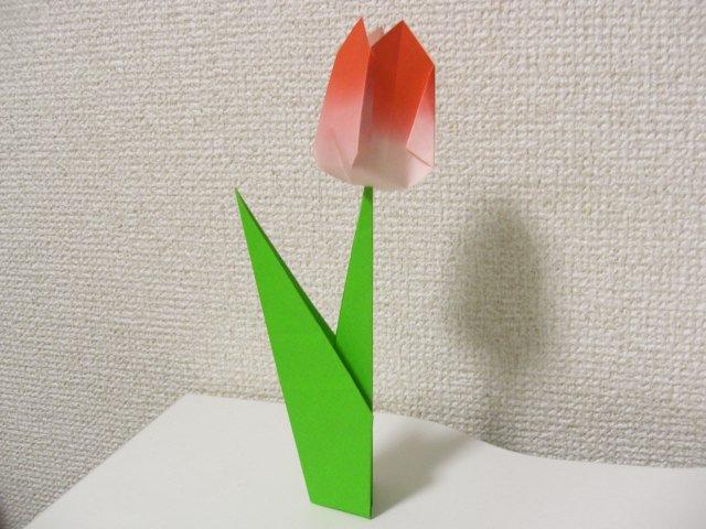 すべての折り紙 折り紙菊の折り方 : 普通サイズの折り紙折り方花束