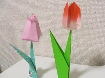 tulip-orikata